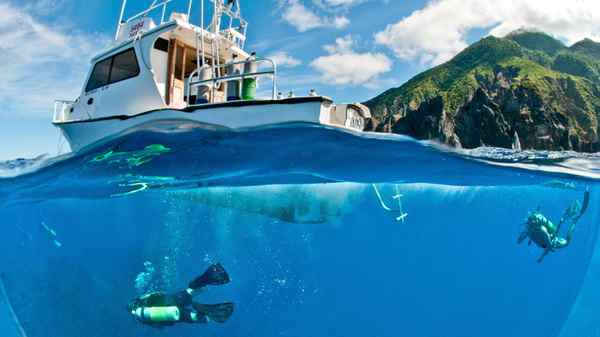 Diving off Saba Island in the Caribbean.