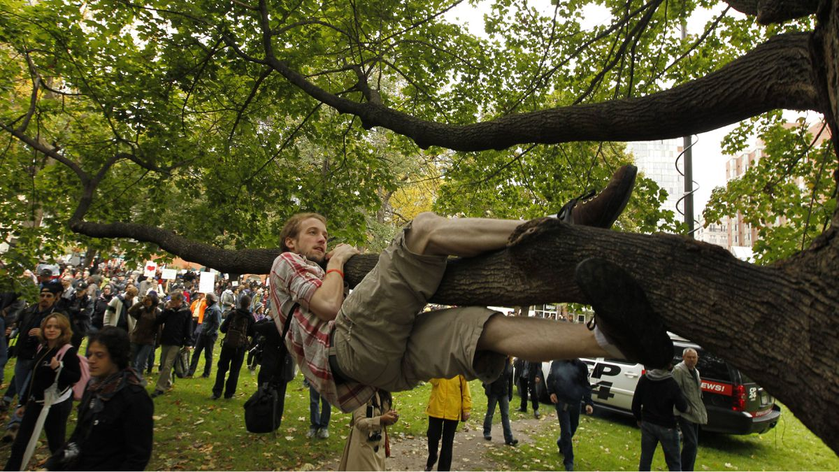 A protesters hangs from a tree during the Occupy Toronto protests on October 15, 2011.