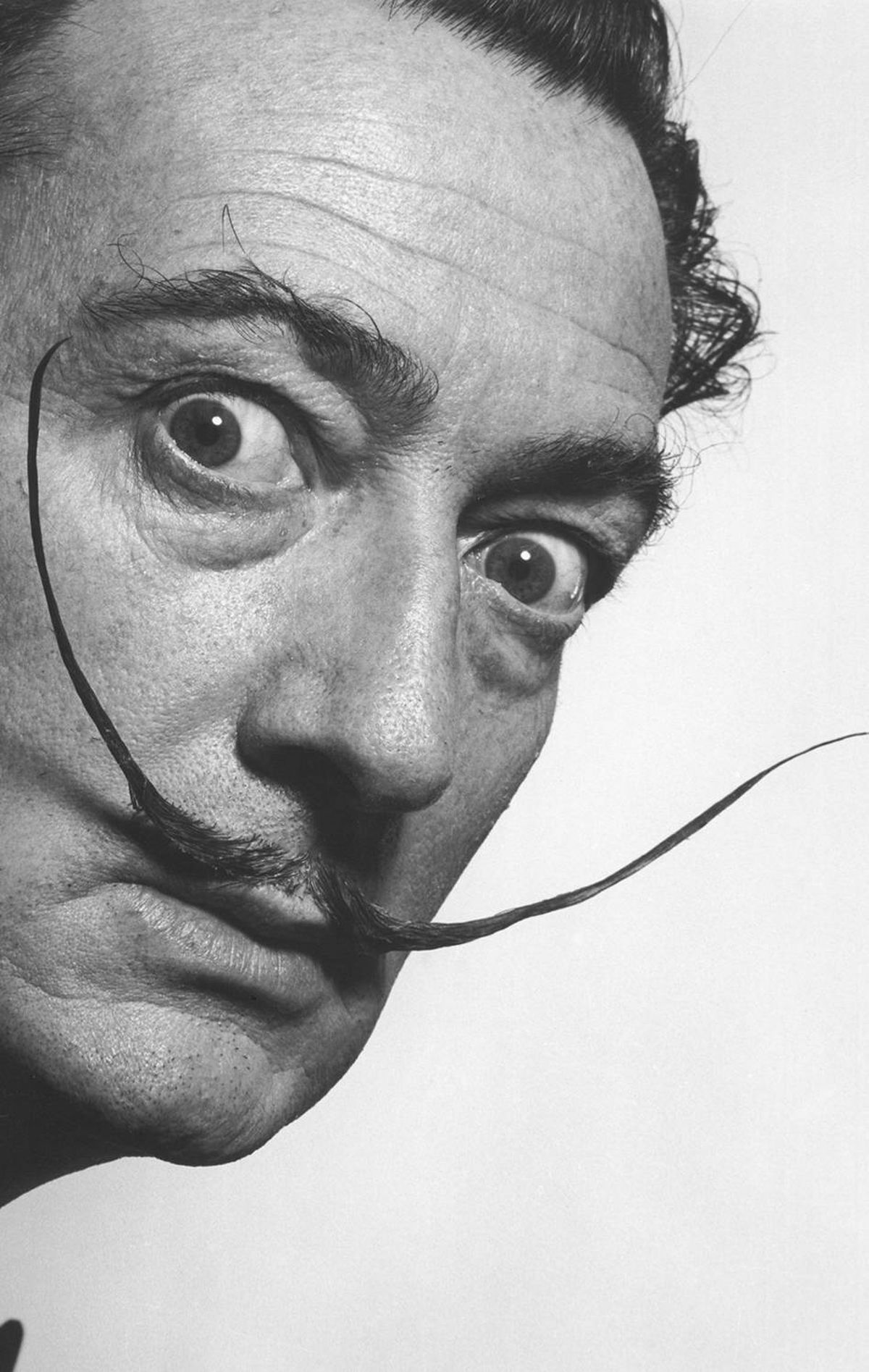 2. SALVADOR DALI What happens when you combine genius, surrealism and facial hair? This beautiful work of art. Don't stare at it too long.