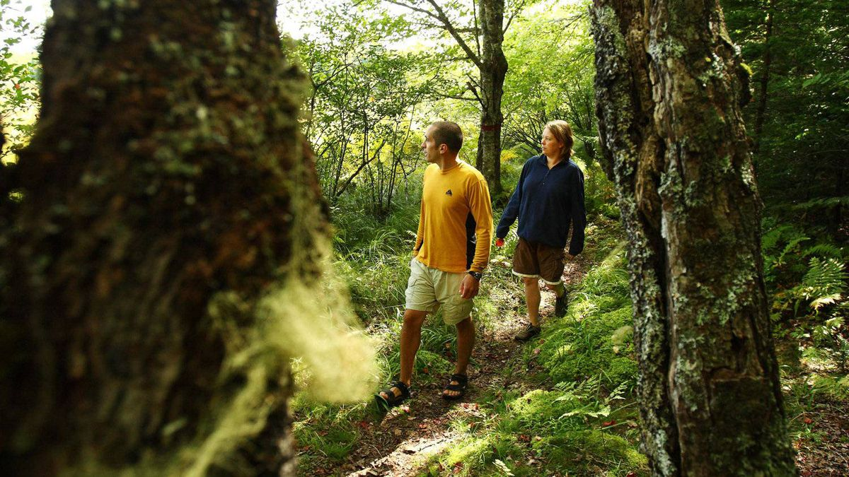 Michael Hanf and Kara Crowell takes a walk through the forest near Trout Point Lodge in Nova Scotia.