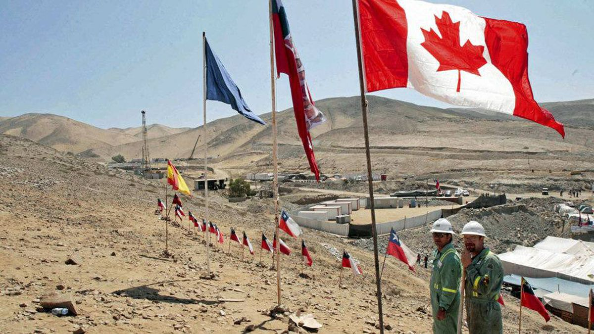 Employees of the Canadian company Precision Drilling finish planting a Canadian flag among the Chilean flags planted weeks ago for the miners in Copiapo on Oct. 2, 2010.