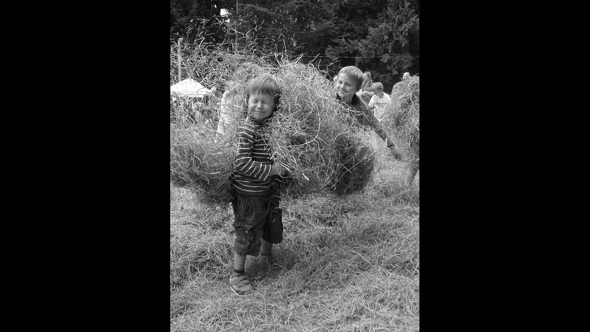 """Sarah Shepherd photo: Kid in a hay stack - Our local fall fair, """"Brackendale Fall Fair Day, September 2010"""" had a stack of hay for kids to play in. Who kne hay would make the kids go crazy?"""