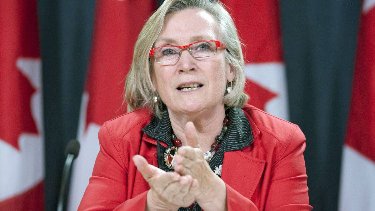 Liberal aboriginal affairs critic Carolyn Bennett speaks to reporters in Ottawa on July 19, 2011.