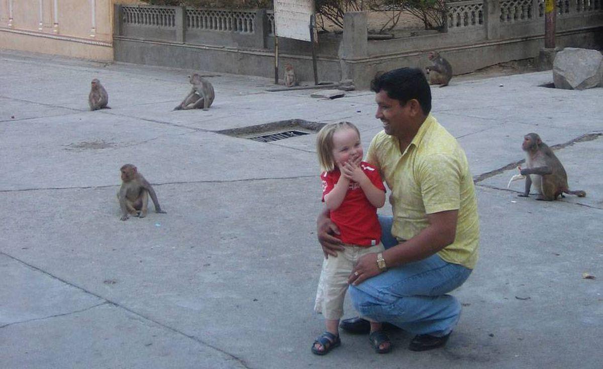 Take your little monkey to the Monkey Temlple in Galta.
