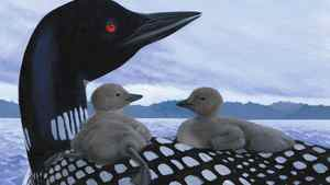 """Detail of an image from the children's book """"Loon"""""""