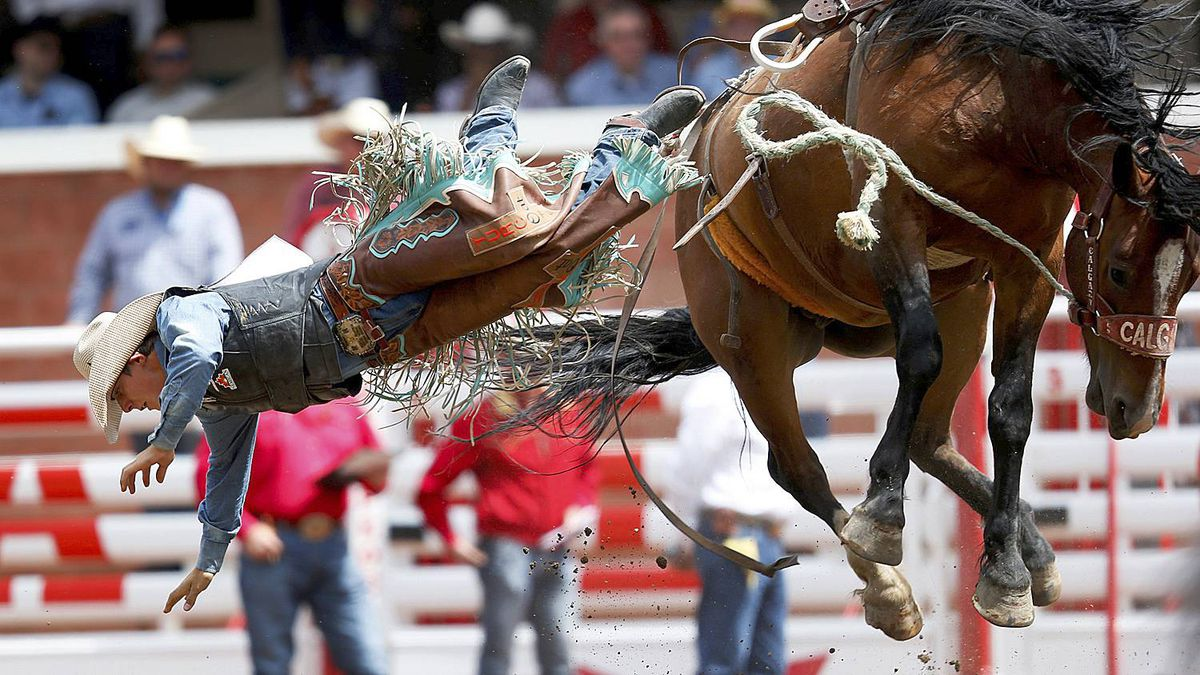 Cowboy Turfed From Calgary Stampede For Whipping Horse