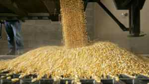 Corn-processing volume rose, helped by accelerating production at two recently build ethanol plants and strong demand for corn-based sweeteners and feed ingredients.