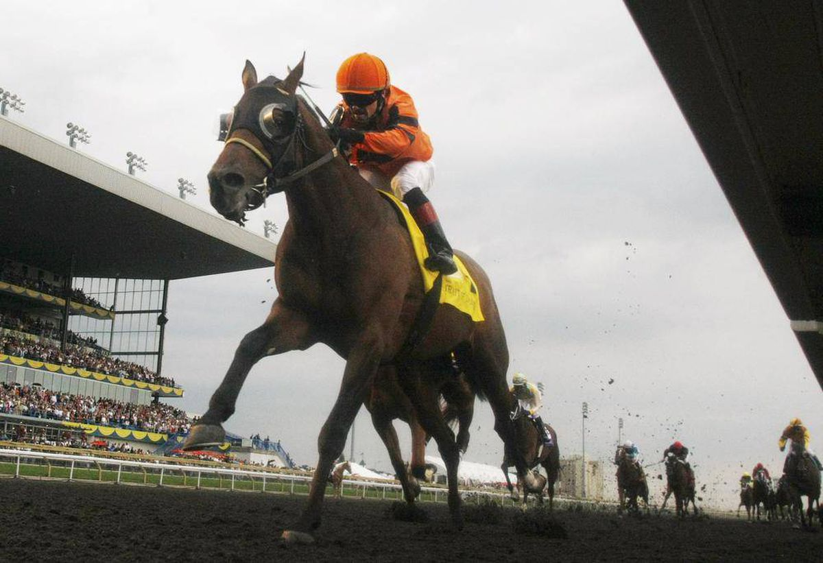 I want to be a racehorse trainer  What will my salary be? - The