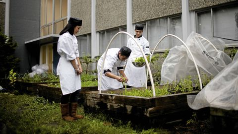 Farm-to-School program boosts health of students and food economy