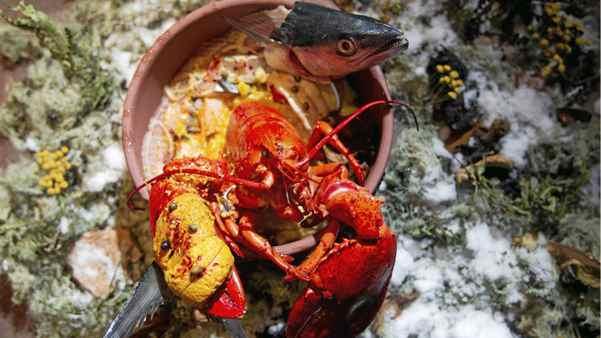 Derek Dammann's dish Sagimite de la mer