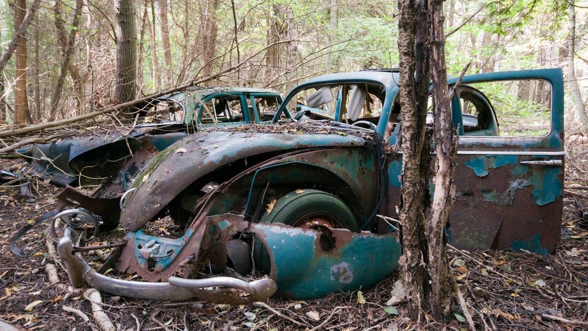 """Thom Evered (thomevered on Flickr) took this photo, """"Rusty Bug,"""" just north of Guelph, Ont."""