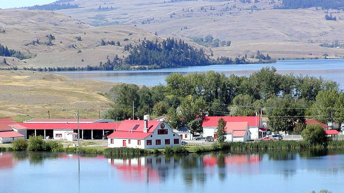 At the douglas lake ranch anglers fight for the right to for Douglas lake fishing