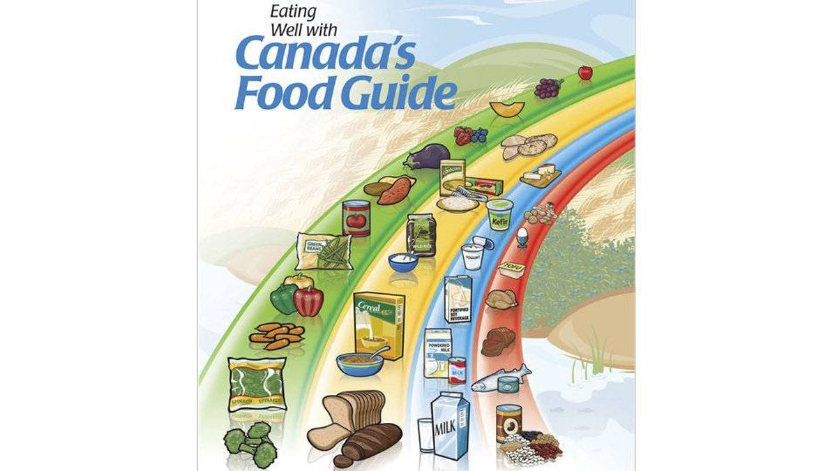 The current issue of the guide, released in 2007, was praised for providing advice targeted to specific groups such as children and older adults, but also criticized for its potential to promote weight gain by suggesting too much food.