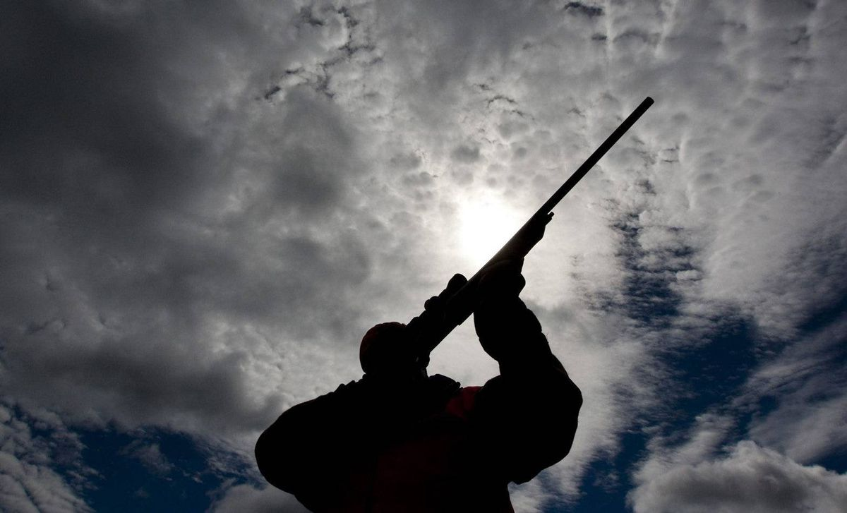 A rifle owner checks the sight of his rifle at a hunting camp property in rural Ontario west of Ottawa on Wednesday Sept. 15, 2010. The House of Commons is set to vote on the long-gun registry next week.