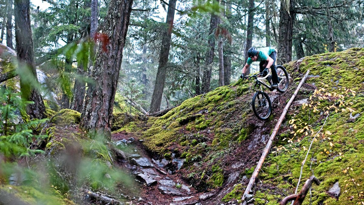 Downhill mountain biking in Whistler, B.C.