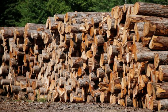 Quebec lumber company Stella-Jones plunges as long-time CEO Brian McManus steps aside