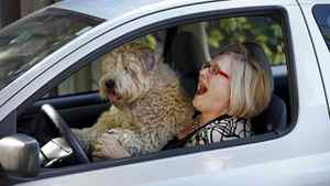 "Mary Lou Fallis, staring in Love, Loss and What I Wore. She drives a Toyota Echo. This is for the Globe Auto ""Me and My Car"" feature. Her dog Percy joins her for the ride. (Moe Doiron/The Globe and Mail)"