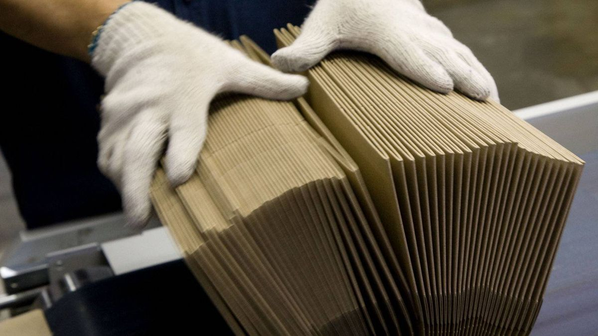 Moody's downgrades outlook for paper and forest products industry