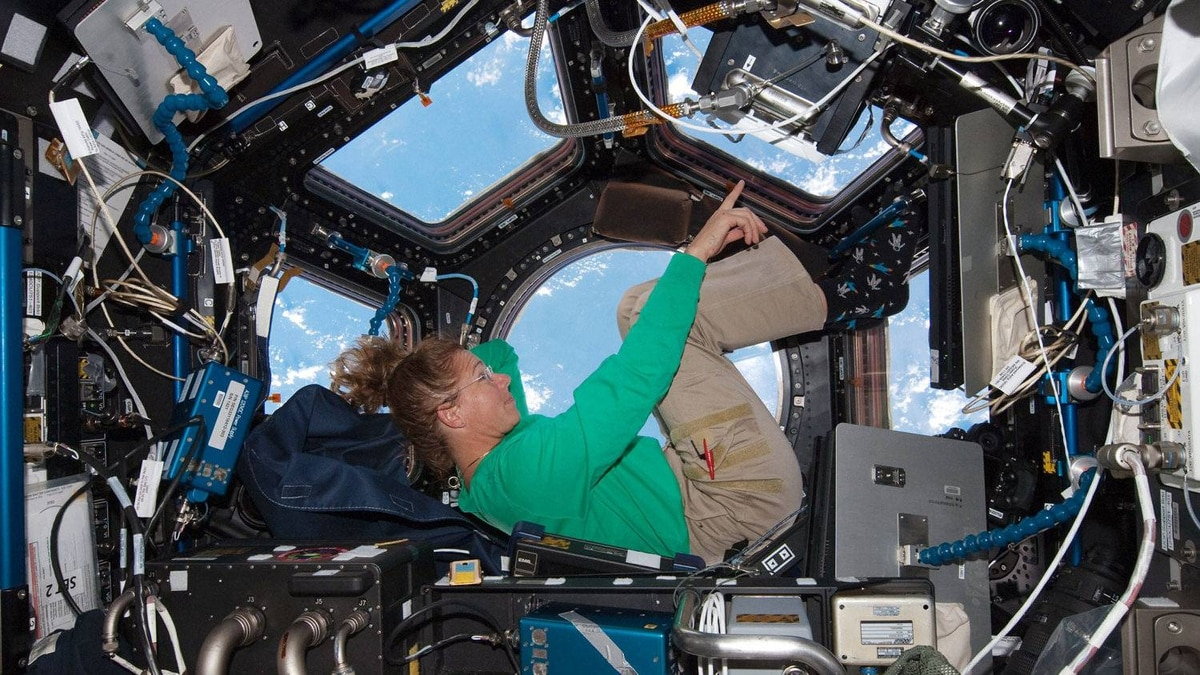 IN SPACE - JULY 16:NASA astronaut Sandy Magnus mission specialist for space shuttle Atlantis STS-135, takes in the view while sitting in the Cupola addition of the International Space Station July 16, 2011 in space.