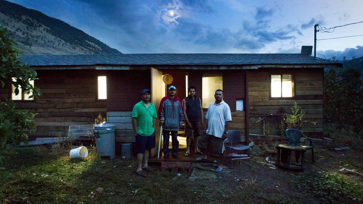 Mexican migrant workers Ignacio Cervantes, Martin Espinoza, Ricardo Rosas and Carlos Arenas - who all work as apple pickers - stand outside the shack in which they live at an apple farm in Cawston, B.C.