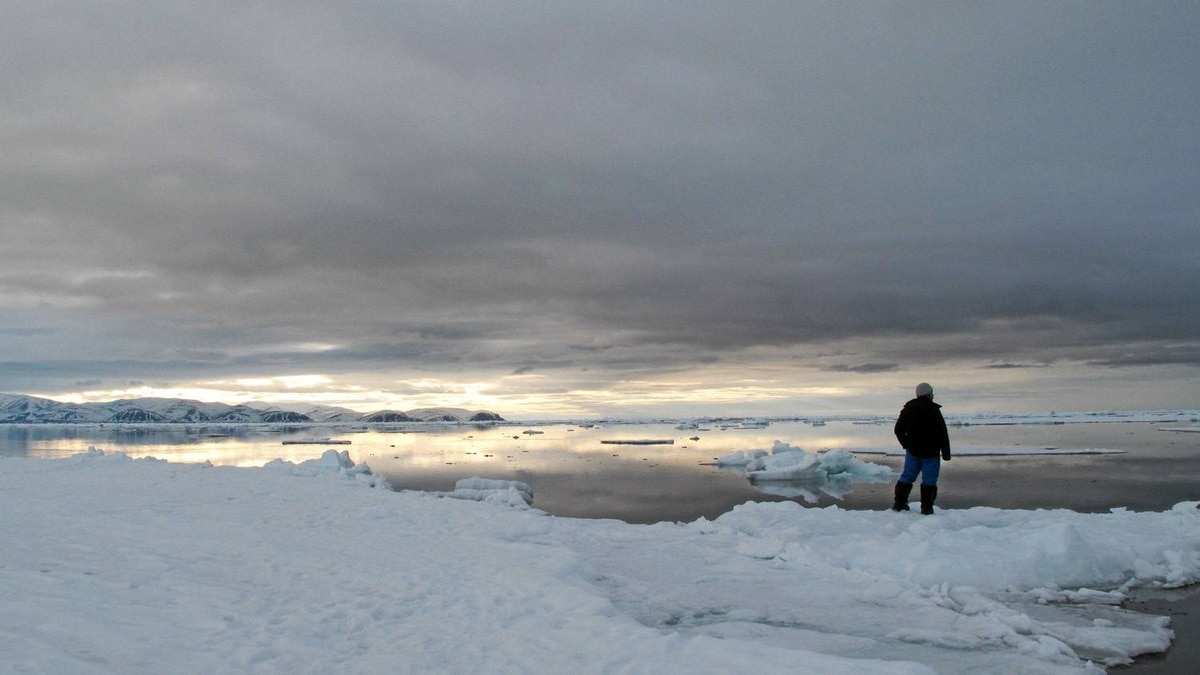 About midnight, on the floe edge looking toward Bylot Island.