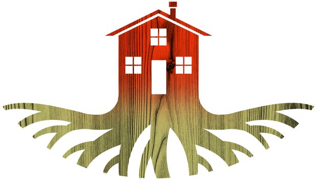 Opinion: How do you put down roots in a home that isn't yours? - The