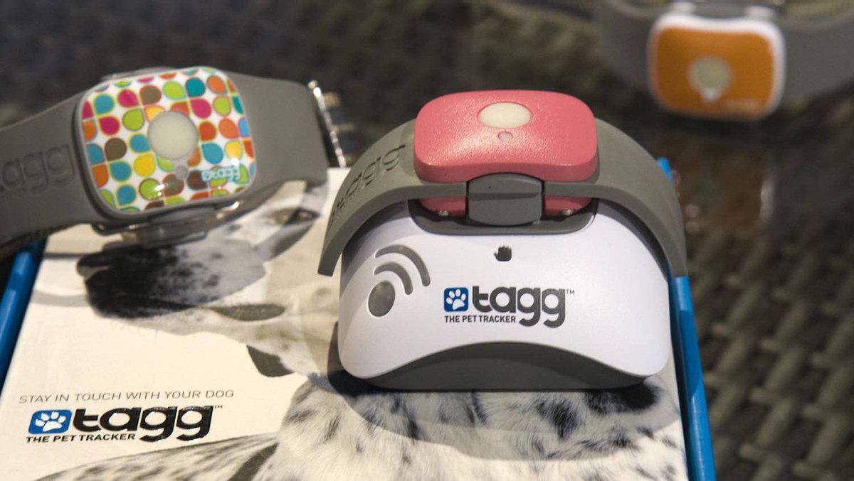 Tagg, a GPS-enabled dog or cat collar so you need never lose your beloved companion again. A minute GPS unit clipped to pet collars will send an alarm text or email to your app-installed smartphone should Snuggles wander outside of a prescribed zone.
