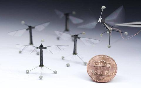 Flight of the RoboBee: Harvard scientists develop tiniest flying robots