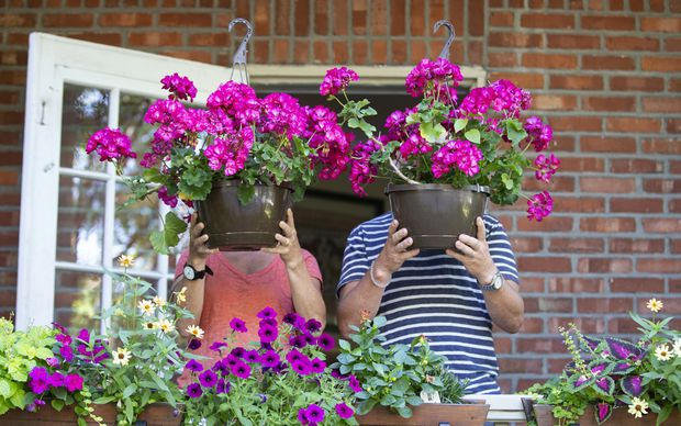 Can this couple retire early to stop and smell the flowers?