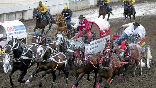 Driver Rae Croteau Jr., right, in white, guides his team around the second barrel during chuckwagon racing action at the Calgary Stampede in Calgary, Monday, July 12, 2010.