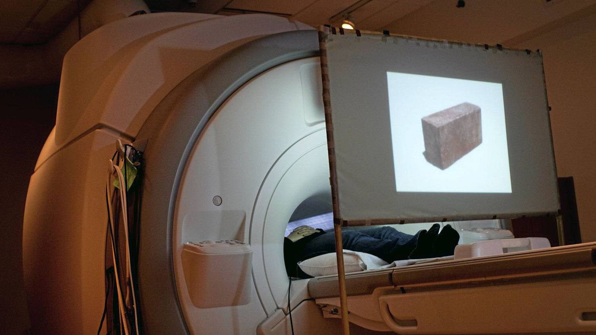 An image of a brick is projected on a screen as researcher Oshin Vartanian uses an MRI to study the human brain.