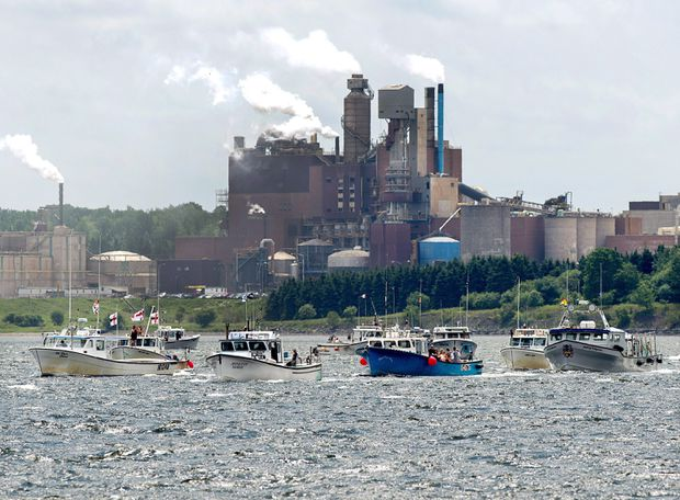 Battle over future of Nova Scotia pulp mill reflects wider Canadian debate, filmmaker says