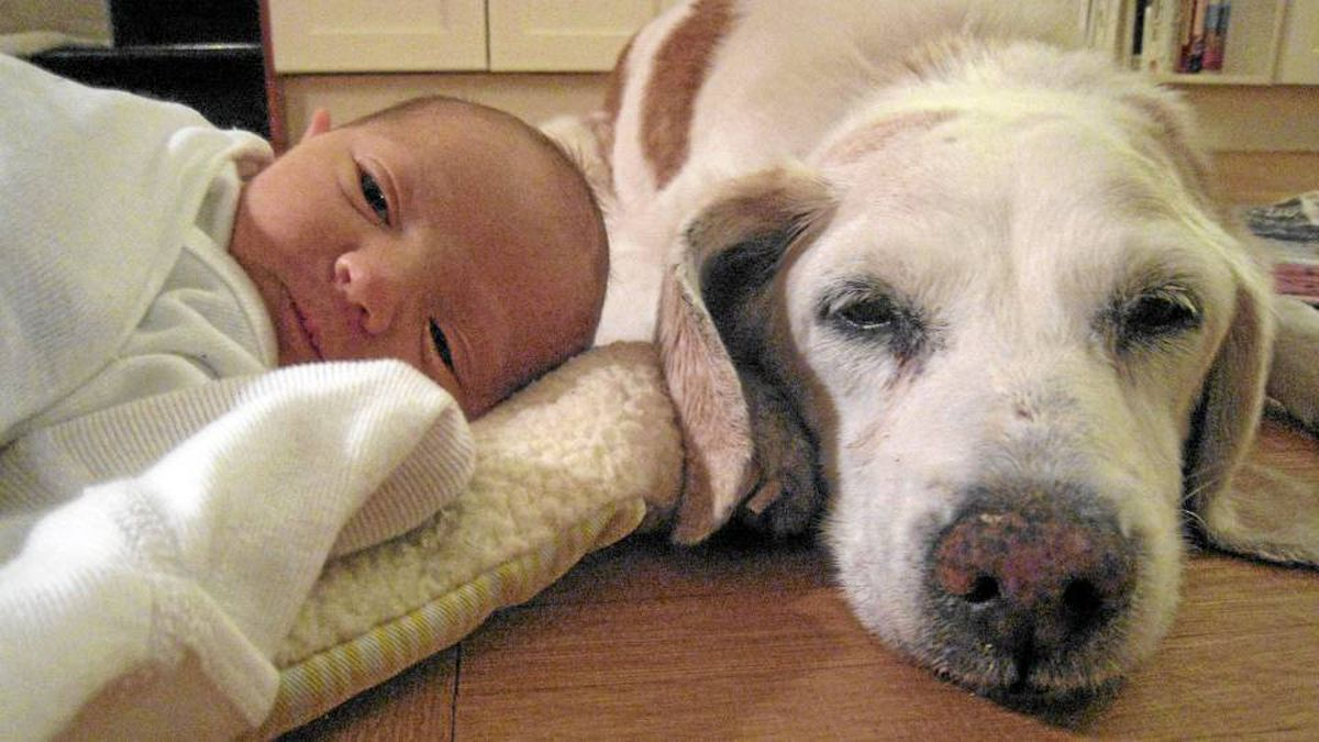 Columnist Rebecca Dube's dog died just a few days after her baby was born. This is Elijah, 2 days old, and Lily
