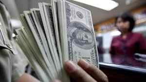U.S. dollar notes