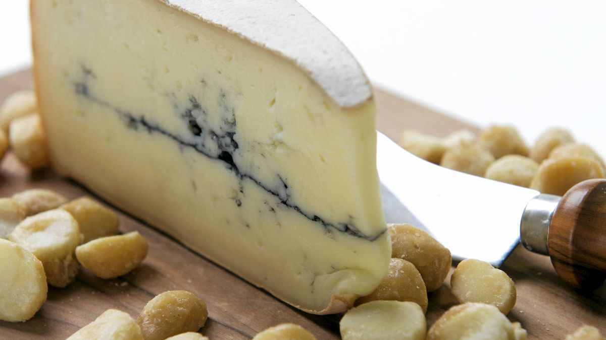 Le Douanier cheese paired with macadamia nuts.