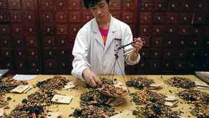 A worker prepares traditional Chinese herbal medicines at Beijing's Capital Medical University Traditional Chinese Medicine Hospital May 25, 2011. The hospital distributes around 20,000 prescription doses daily, more than five tonnes of ingredients, from their stock of 600 different types of plants, herbs, and animal organs. Almost all traditional Chinese herbal medicine has been banned from sale in European Union (EU) countries since May 1, following the implementation of the Traditional Herbal Medicinal Products Directive that was originally passed in 2004. Under the guidelines, all herbal medicinal products are required to obtain a certificate before entering the EU market, and have a history of at least 30 years, including 15 years in EU regions. REUTERS/David Gray (CHINA - Tags: HEALTH SOCIETY EMPLOYMENT BUSINESS)
