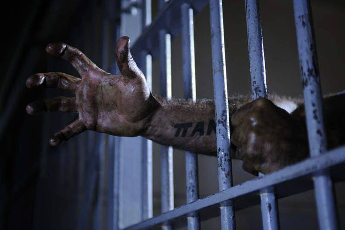 """A scene from the Canadian horror film """"Cell 213."""""""