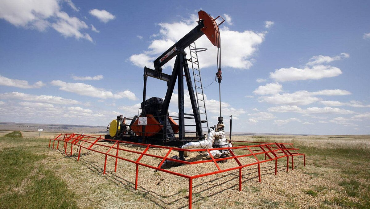 A Canadian Natural Resources pump jack pumps oil out of the ground near Dorothy, Alberta, June 30, 2009.