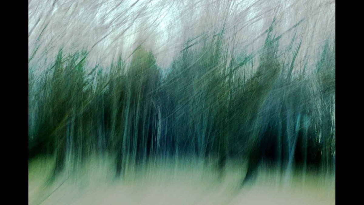 Motion blur of trees along the roadside, taking on the characteristics of a drawing. Taken Nov 2011.