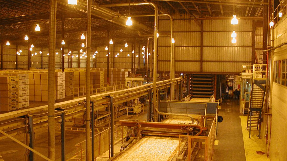 A view of the forming line at Norbord's Nacogdoches mill as it feeds into the press.