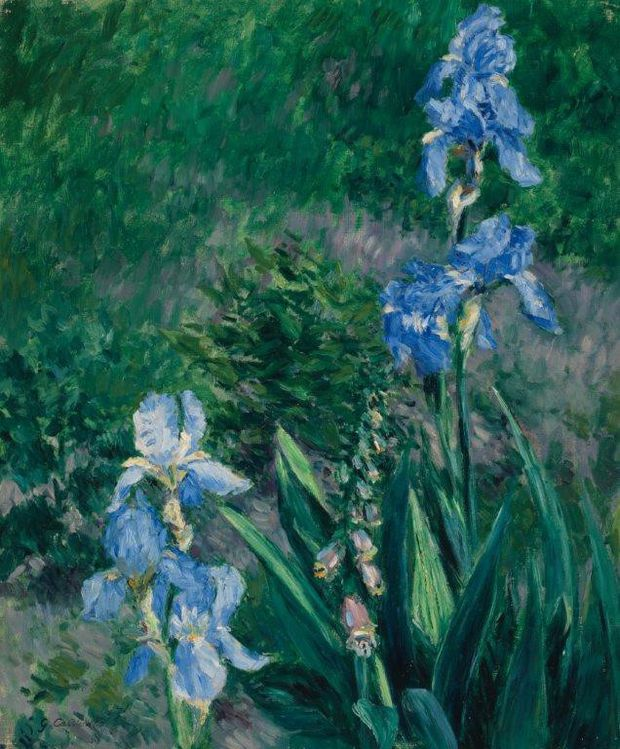 Art Gallery of Ontario buys Blue Irises painting for more than $1-million, ending years of dispute