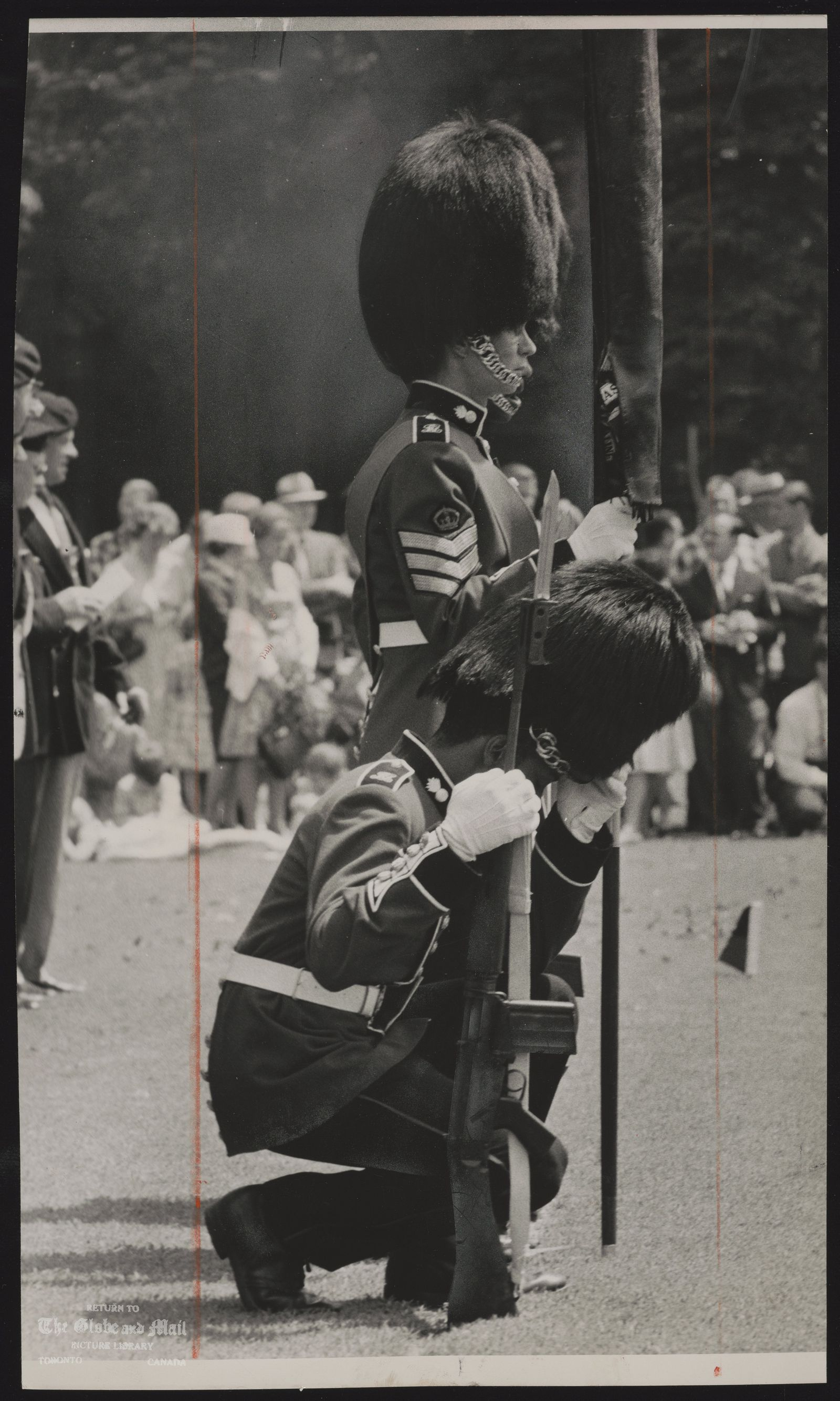 CANADA Dominion Army Royal Regiment of Canada L.F Color sentry in full dress of scarlet tunic and bearskin hat falters in heat during inspection of Regiment by Lt. Gen.G.G. Simons, at University of Toronto campus