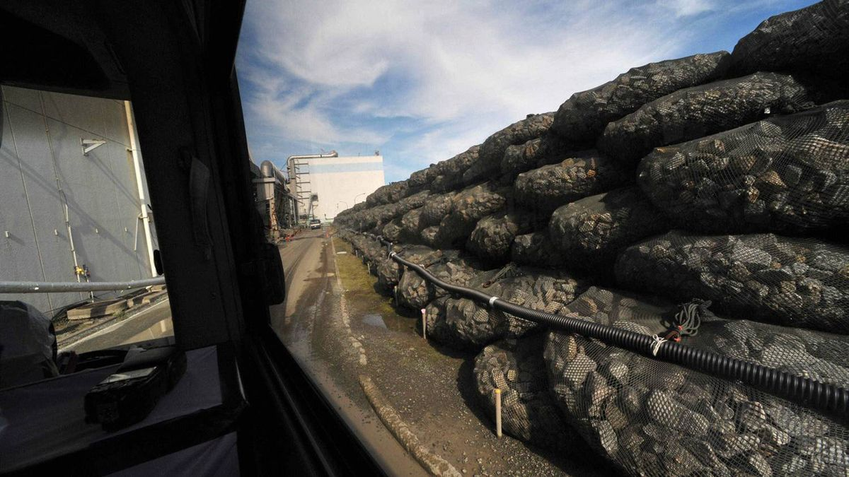 Makeshift storm surge barrier fortifies the crippled Fukushima Dai-ichi nuclear power station as it is observed from inside a bus in Okuma, Fukushima Prefecture, Japan, Saturday, Nov. 12, 2011.