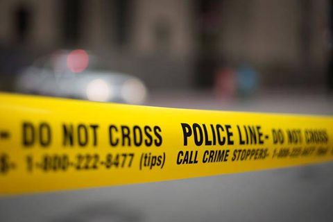 Human remains found in Algonquin Park