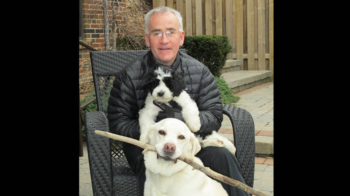 From Louisa Cantelon in Toronto, Ontario: Dr. Allan Jeffreis and our two dogs: 13-year old Reilly (Yellow Lab), and 3 month old Basil (a wavy-haired Portuguese Water dog).