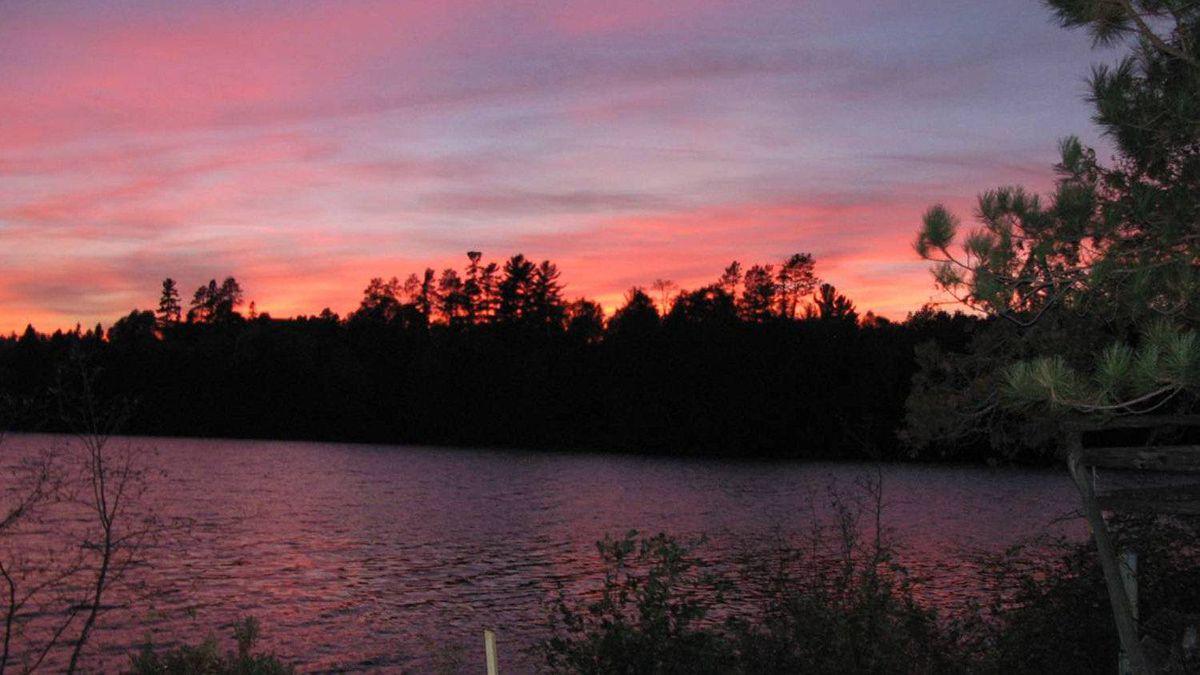 A sunset shot. Giant white pines poke up through the treeline.