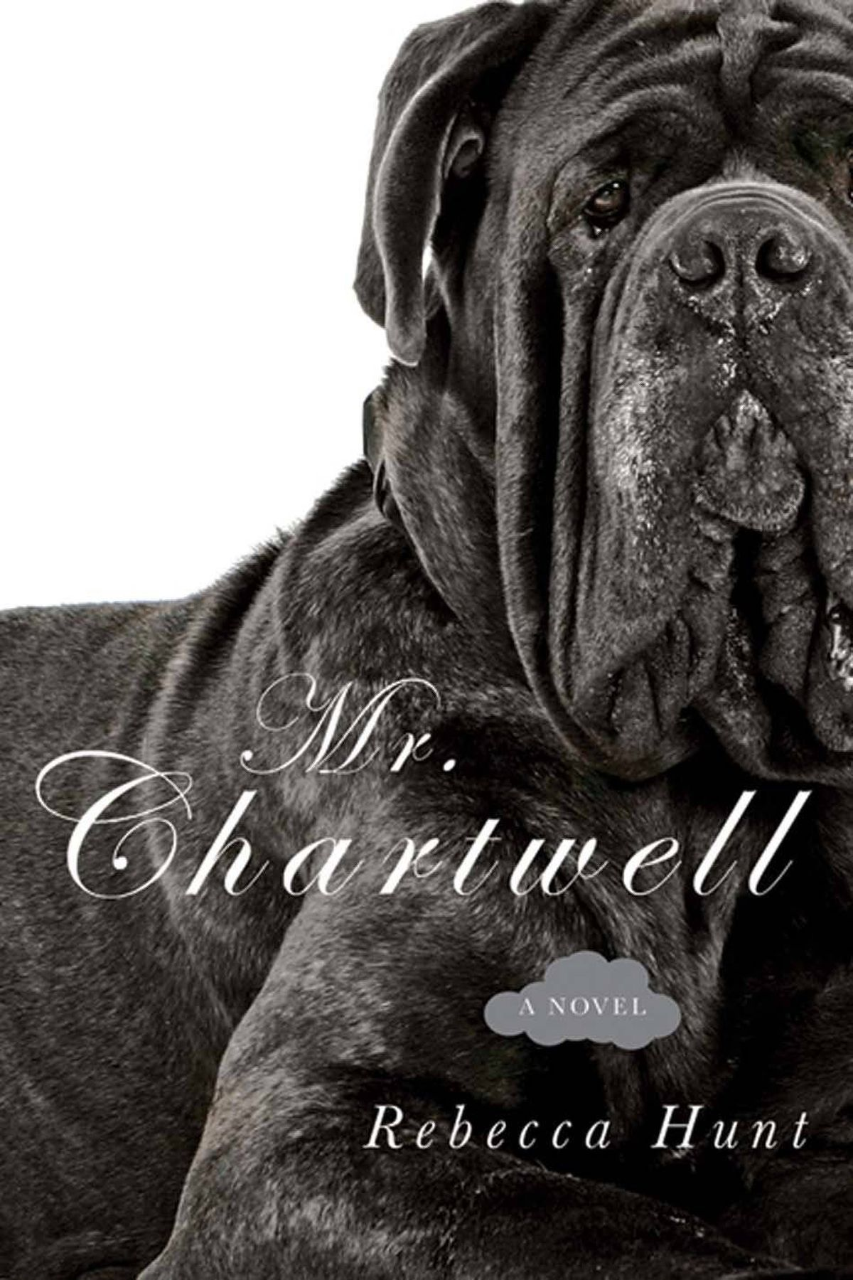 MR. CHARTWELL By Rebecca Hunt (HarperCollins) In Hunt's first novel, the subject is Sir Winston Churchill in the 1960s, and she delivers a refreshing, strange and deeply empathetic portrait of the great man in decline, along with a jumpy, twisty, brilliantly imagined story. Her subject is actually the Black Dog, which is how Sir Winston referred to his severe periodic depressions. – Peter Behrens