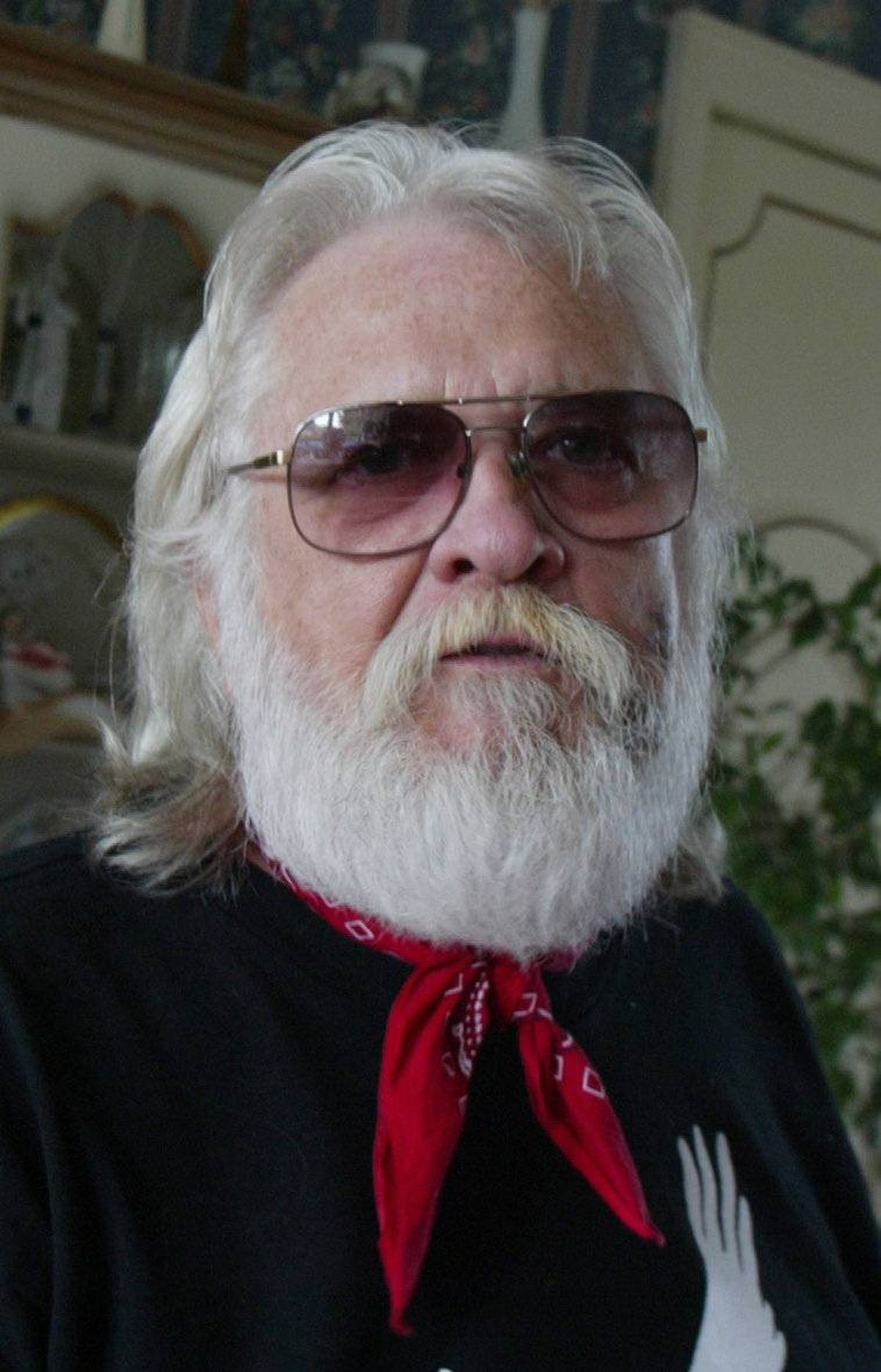 Ronnie Hawkins: Hairy Hawk