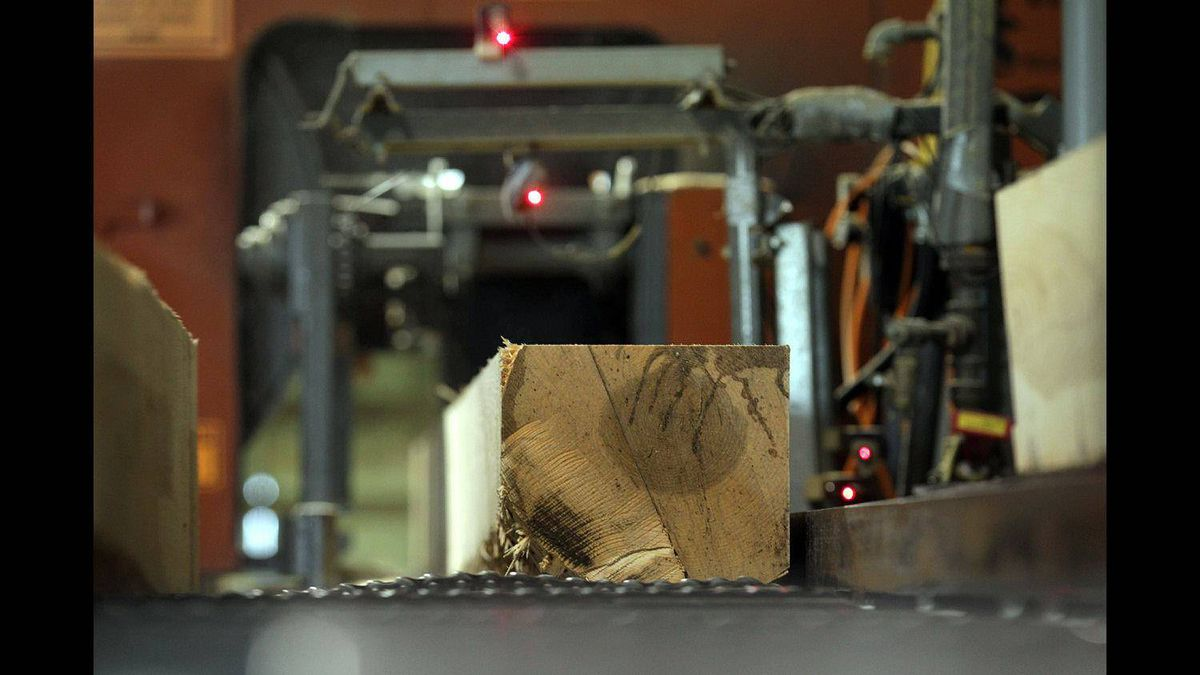 A log goes through the sawmill at South Bruce Flooring hardwood flooring plant in Mildmay, Ont.