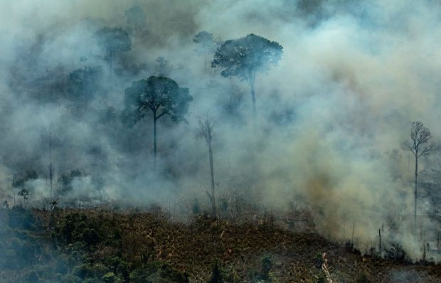 Brazil says thousands of troops available to combat forest fires